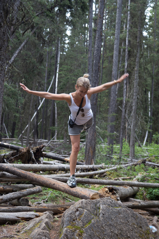 Balancing on log tree in a forest in the Rocky Mountains in Canada