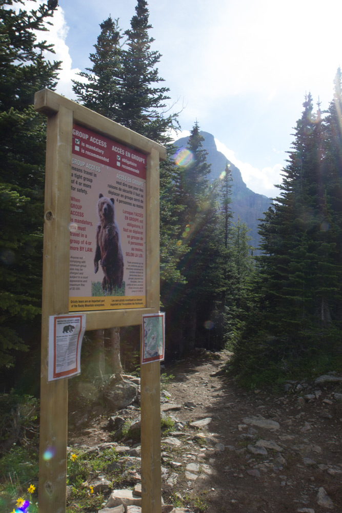Beware of the bears sign in the Rocky Mountains, there are brown bears and black bears