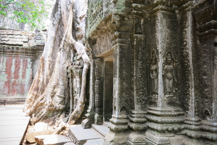 "One of my favourite temples: ""the Tomb Raider famous"" Ta Prohm"