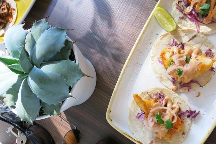 Fish tacoja! Parhaat olen saanut toki Meksikossa