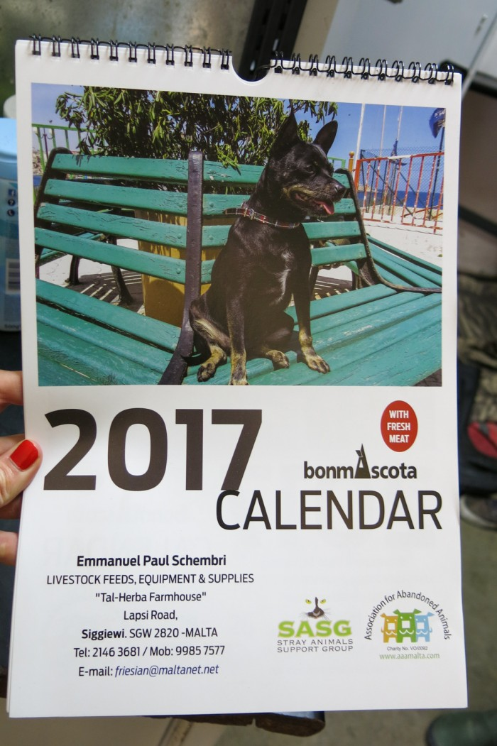 AAA sells the calendars for 5 euros - in their sanctuary and in the charity shop